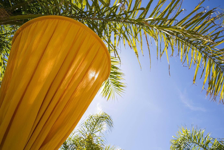 Bambulah yellow mosquito net canopy