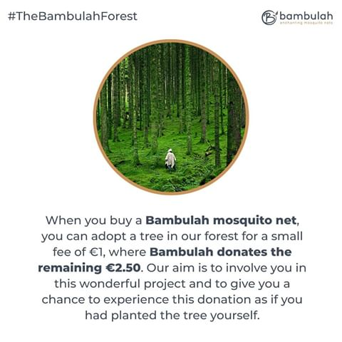 When you buy a Bambulah mosquito net you can adopt tree in our forest for a small fee of 1 euro